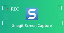 Snagit Screen Captur