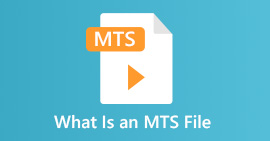 What Is An MTS File
