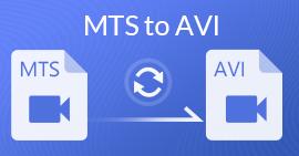 MTS til AVI