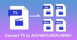 TS إلى AVI MKV MOV WMV