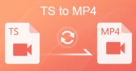 TS إلى MP4