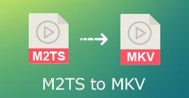 M2TS til MKV