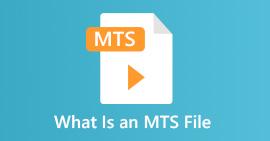 Hva er en MTS-fil