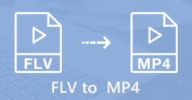 FLV в MP4