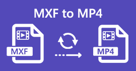 MXF в MP4