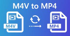 M4V в MP4