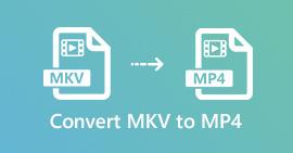 MKV to MP4