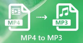 MP4 в MP3