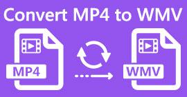 MP4 в WMV