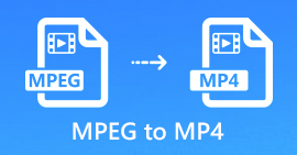 MPEG в MP4
