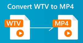 WTV в MP4