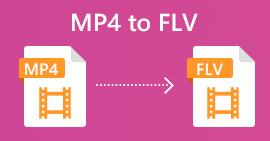 MP4 в FLV