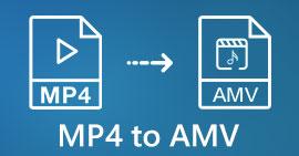 MP4 в AMV