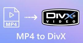 MP4 в DivX