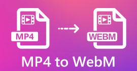 MP4 в WebM