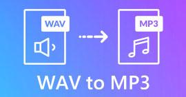 WAV ל- MP3