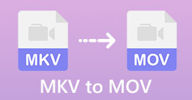 MKV do MOV