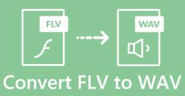 FLV เป็น WAV