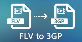FLV เป็น 3GP