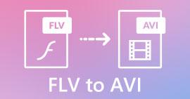 FLV เป็น AVI