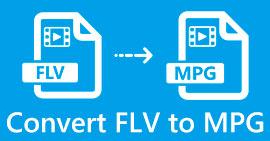 FLV เป็น MPG