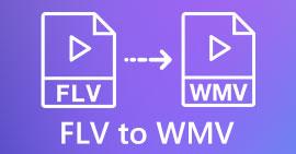 FLV เป็น WMV