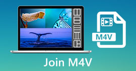 Bergabunglah dengan M4V