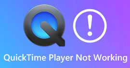 QuickTime Player Not Working