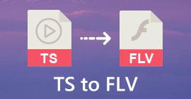 TS إلى FLV