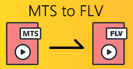 MTS do FLV