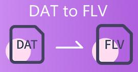 DAT เป็น FLV