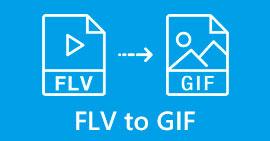 FLV - GIF