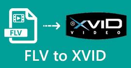FLV เป็น Xvid