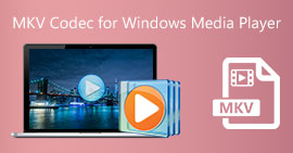 Kodek MKV dla Windows Media Player