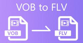 VOB เป็น FLV