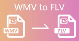 WMV เป็น FLV