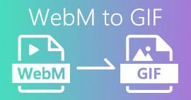 WebM - GIF