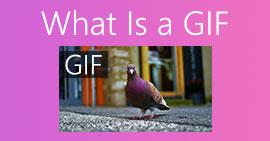 Mikä on GIF