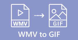 WMV GIF -muotoon