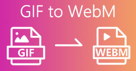 GIF WebM: lle