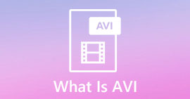 What Is AVI