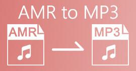 AMR ל- MP3