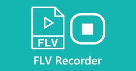 Rejestrator FLV