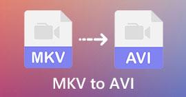 MKV do AVI