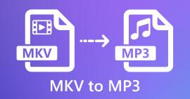 MKV ל- MP3