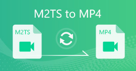 M2TS to MP4