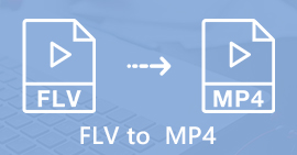 FLV to MP4