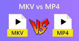 MKV 대 MP4