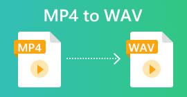 MP4 tp WAV