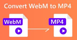 WebM에서 MP4로